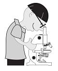 microscopy-148139_1280_opt