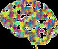 brain-2750453_640_opt.png