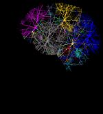 cranium-3244118_1280_opt.png