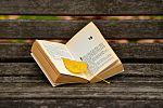 book-3773783_1280_opt