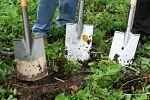 gardening-331986_1280_opt.jpg
