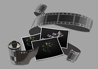filmstrip-3469991_1280_opt 1.jpg