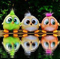 birds-1506994_640_opt